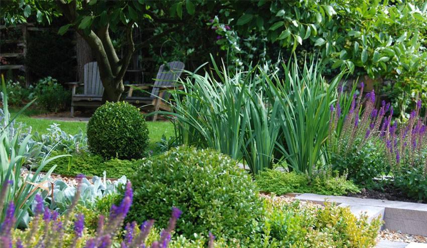 structured-garden-in-derbyshire-with-box