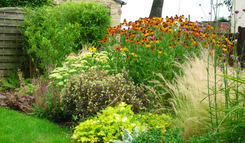 front-garden2-4