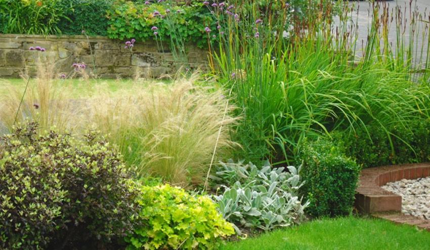 front-garden2-5