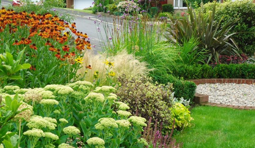 front-garden2-1