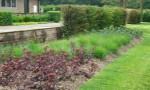 contemporary-country-garden7