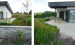 large-modernist-garden4