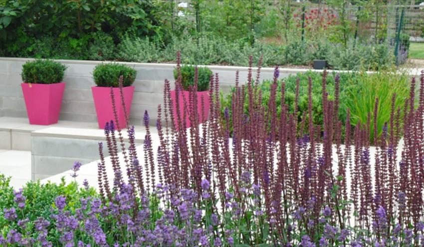 contemporary-city-garden-two2