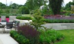 contemporary-city-garden-two1