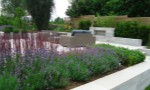 contemporary-city-garden-two5