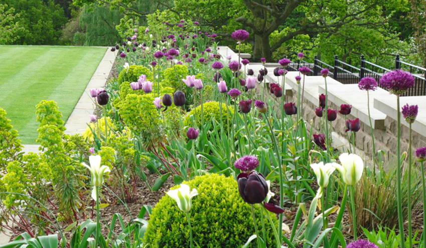 contemporary-country-garden1